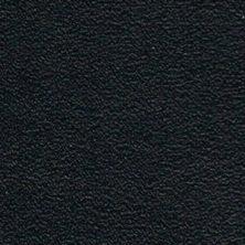Stödläder Tärnsjö 9308 svart