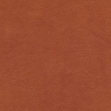'Wild nature' (cognac) 8695 från Tärnsjö Garveri